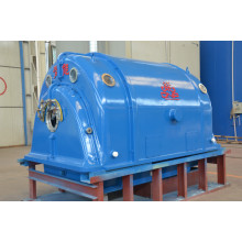 Stora Steam Turbine Generators