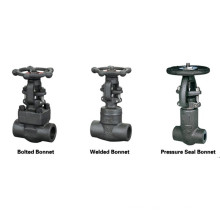 GB Standard 800 Lbs A105 Forged Steel Gate Valve