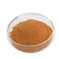 Hot Sale high quality Natural avocado extract