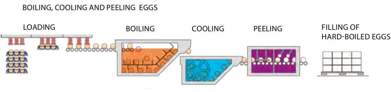 Hard-Boiled Egg Processing Line