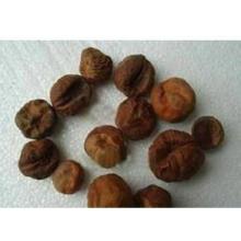Extracto 100% natural de Shiva Luo Zi