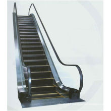 Unique Design of Home Escalator
