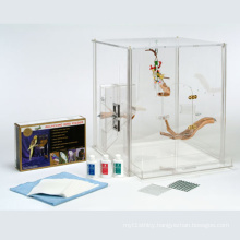 Customized Clear Acrylic Boxes for Pets Animals