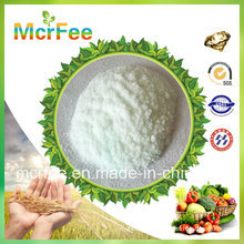 Factory 100% Water Soluble Compound Fertilizer (16-8-34)
