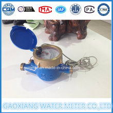 Direct Reading Water Meters with Pulse Output