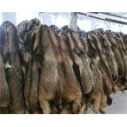 Chinese Raccoon Skin