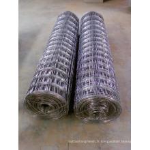 Clôture en champ galvanisé à chaud DIP haute qualité (XM-FF01)