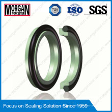 Tipo de anúncio Resistência ao desgaste Cilindro hidráulico Borracha / PTFE Scraper Seal Ring