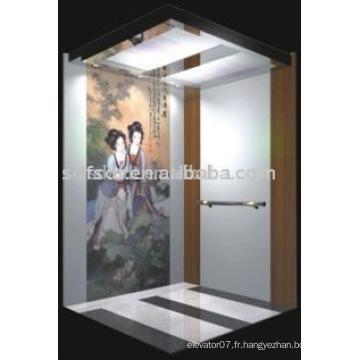 Ascenseur résidentiel à domicile pour passagers avec petite machine moins usage Technologie japonaise (FJ8000-1)