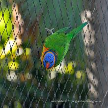 Maille de clôture de perroquet et maille de petit oiseau