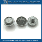 5/16X3/4 Inch Galvanized Hex Flange Screw