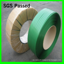 Recyling Pet Strapping / Pet Strap