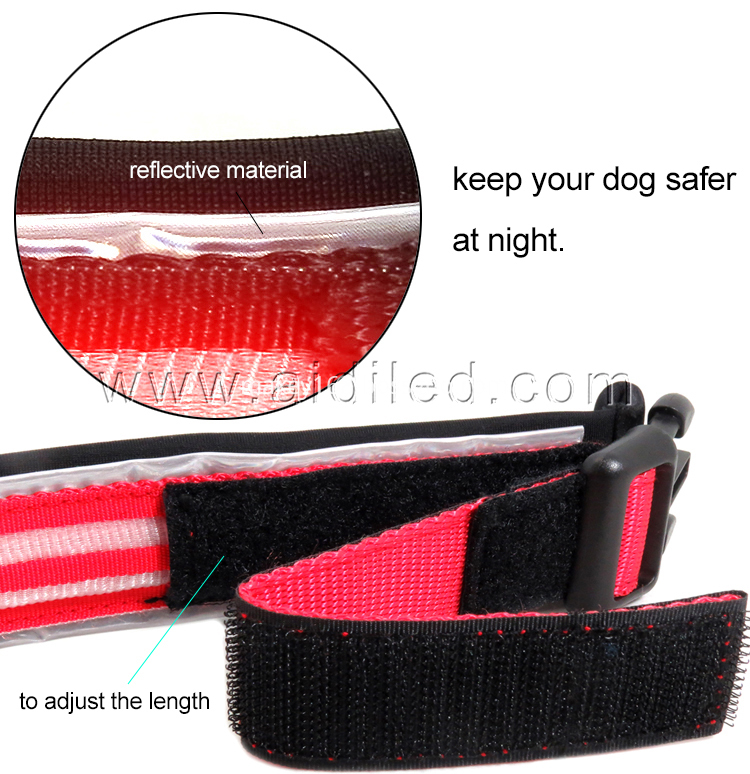 Best Illuminated Dog Collar