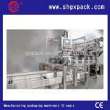 2015 New style Doypack machine for fruits chips