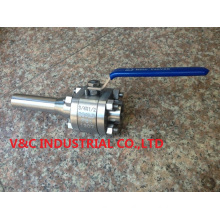 Dss Forge Ball Valve with Nipple