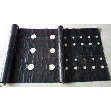 Сорняк коврик с отверстиями/грунтовое покрытие/ткань ландшафта/сада Обложка