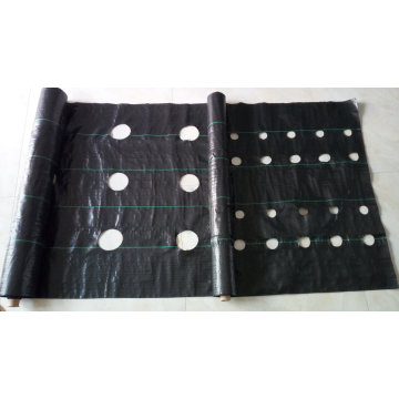 Weed Mat with Holes/Ground Cover/Landscape Fabric/Garden Cover