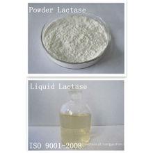 Lactase, Ph4 a 7, Tem30 a 60, Atividade enzimática 2.000 ACL U / g a 180.000 ACL U / g, Forma líquida e em pó, Grau alimentício, Beta-galactosidase