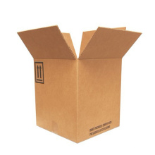 Strong Kraft Folding Carton (FP7013)