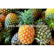 fresh sweet pineapples / canned pineapple
