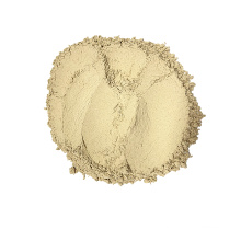 TOP Quality 100% Pure AD Button Mushroom Powder For Food Cooking