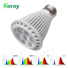 LED cresce espectro de luz de 5 watts para armários ndoor plantadas suculentas e pequenos vasos de plantas