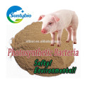 Feed Probiotics Aquaculture Photosynthetic Bacteria for poultry