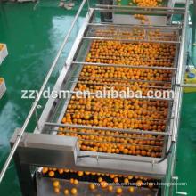 Línea comercial de producción de jugo de manzana de anacardo