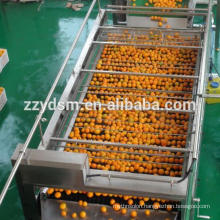Industrial cashew fruit juice processing line