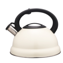 2.5L white tea kettle