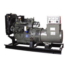 15kw Ricardo Diesel Generator prix