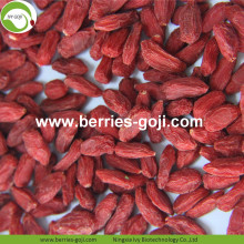 Perder peso seco natural saludable tibetano Wolfberry
