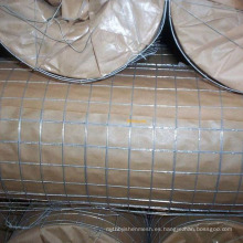 Paneles de cerca de malla de alambre soldado de alta calidad en 6 gauge