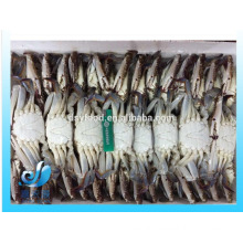 frozen blue swimming crab 100g -150g 150-200g