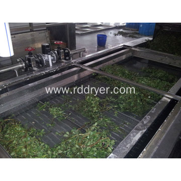 DW Continuous Belt Dryer For Vegetables