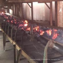 Bande de conveyeur en caoutchouc de résistance thermique pour la centrale à charbon