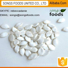 Hot Sale China Green Pumpkin Seeds