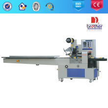 Multi Function Pillow Type Packer (DZB-300W)