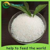 Sap-Super Absorbent Polymer Agriculture