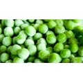 Top Quality Frozen Green Peas for Exporting