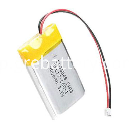 Rechargeable Lithium Polymer Batteries