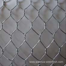 Best Chicken Wire Mesh