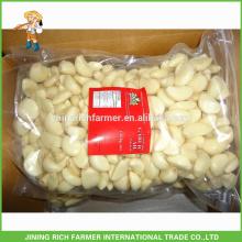 Export Canada Fresh Peeled Garlic