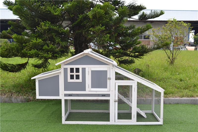 Customized chicken coop