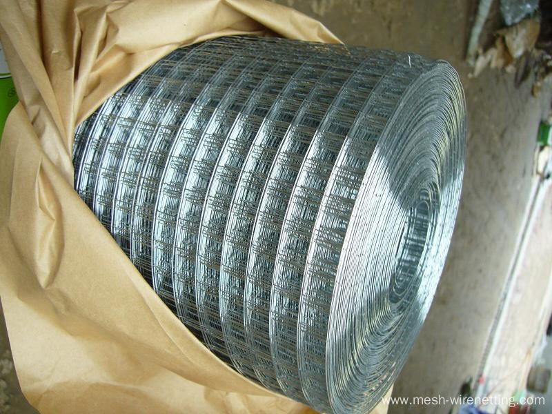 Stainless Steel galvanizelded wire meshed W