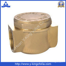 Forged Brass Swing Check Valve with Brass Colour (YD-3010)