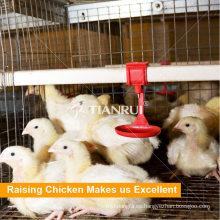 Capa de varios niveles / pollo de engorde / jaula de pollos en granja de pollos