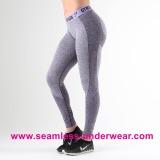 Seamless Legging Pants, Seamless Fitness Leggings, Custom Yoga Leggings, Gym Leggings Wholesale