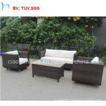 Sofa de rotin de meubles de sofa de rotin de conception spéciale
