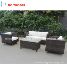 Special Design Rattan Sofa Furniture Rattan Sofa